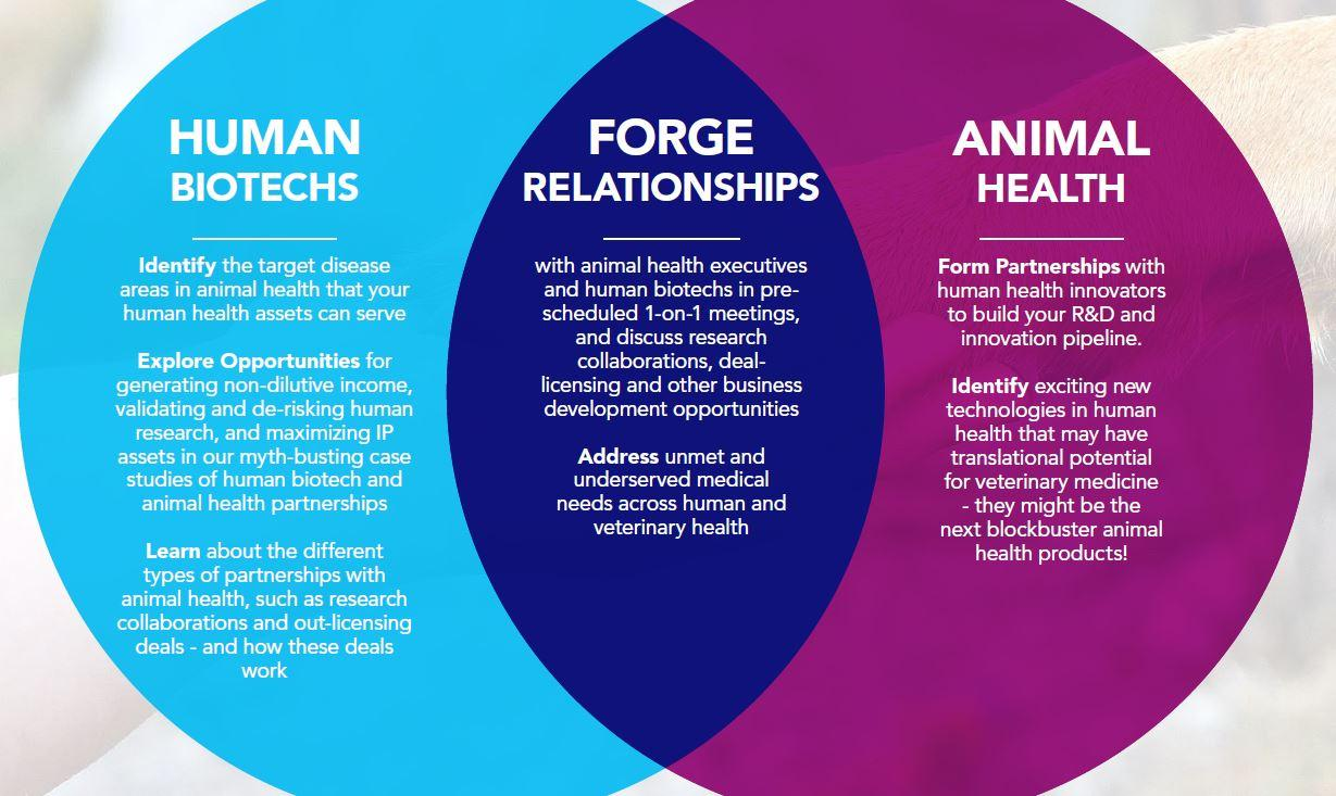 Forge relationships; Identify exciting new technologies; Learn about the different types of patnerships available to you
